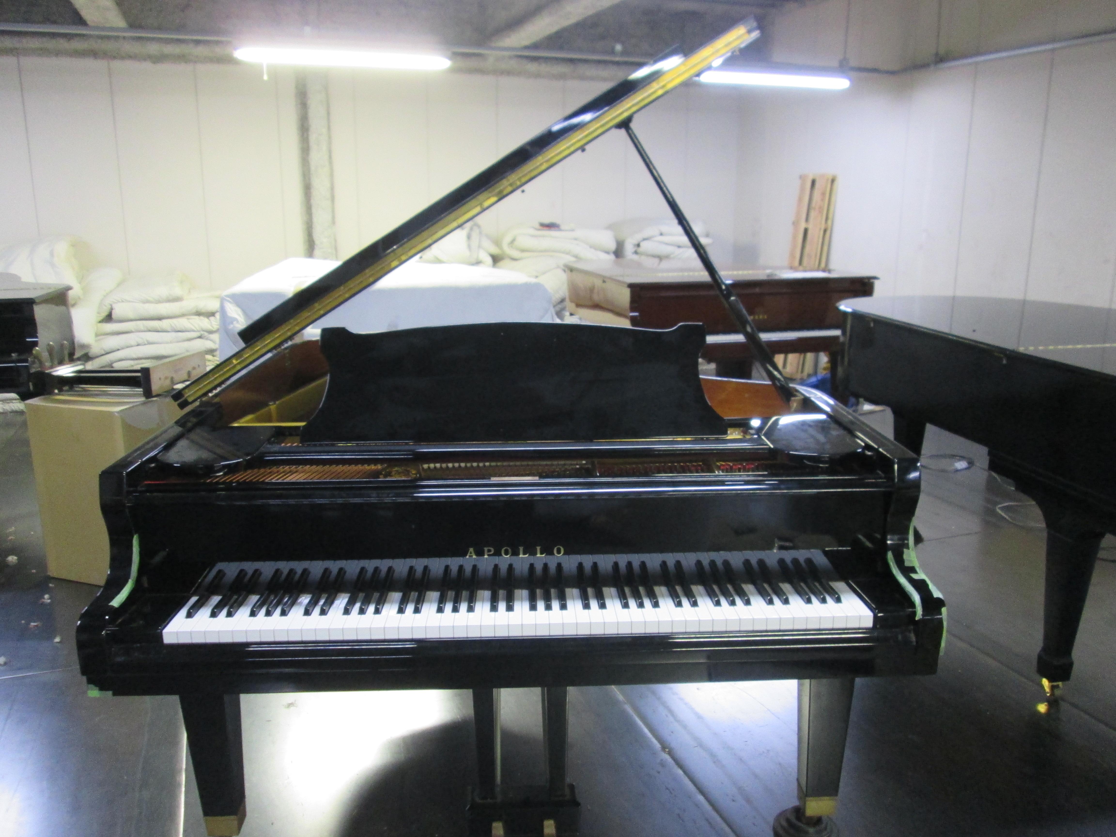 TAKEMOTO PIANO CO , LTD